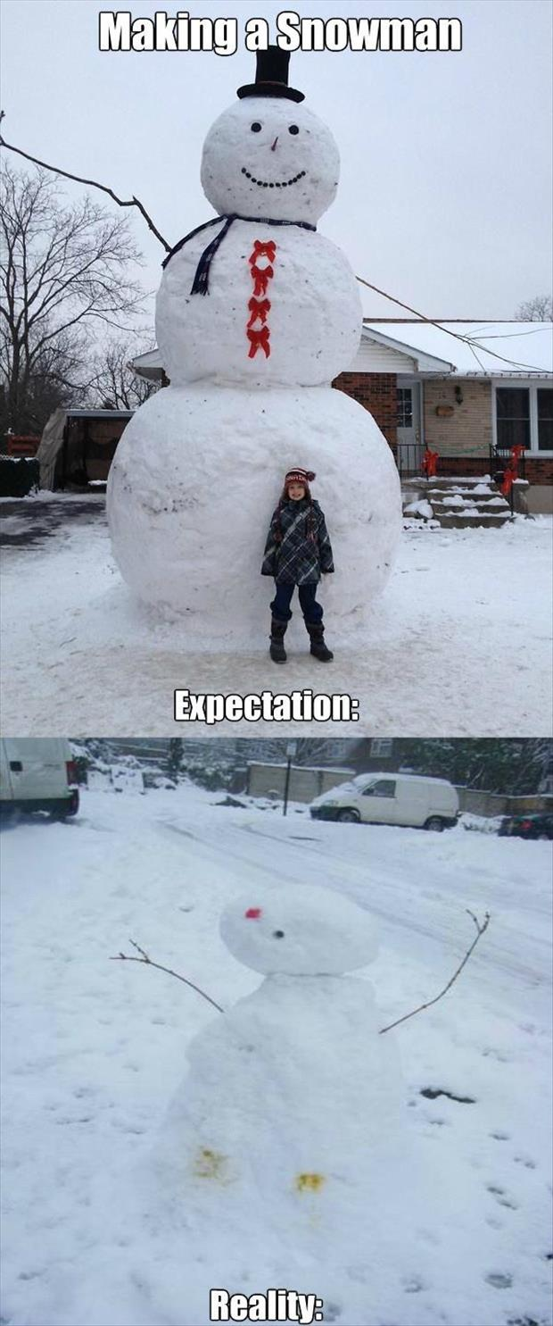 the funny pictures (4)