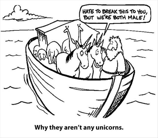 why they're not any unicorns