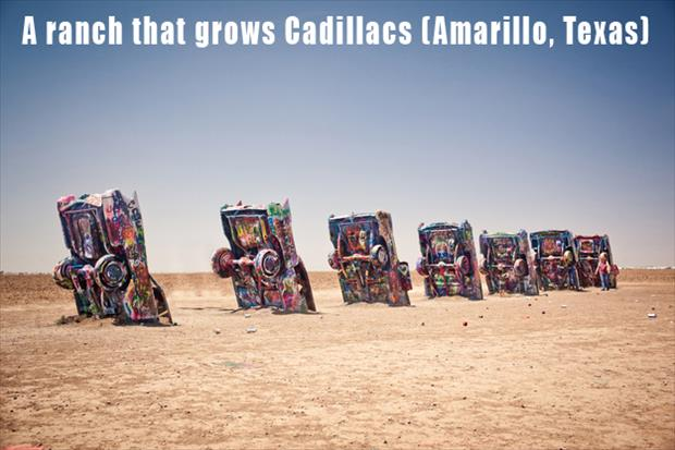 The Most Incredible Roadside Sights - Cadillac Ranch