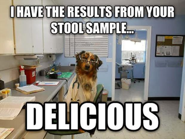 a stool samples funny