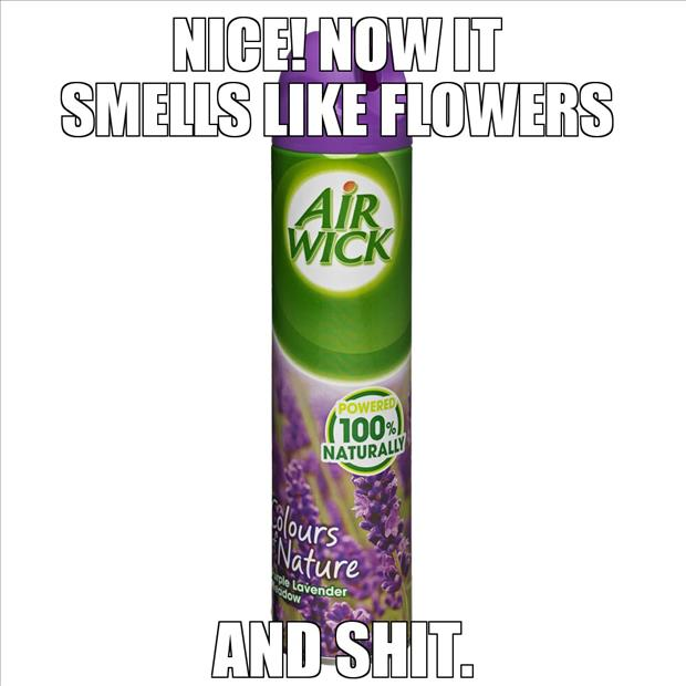 bathroom air freshener