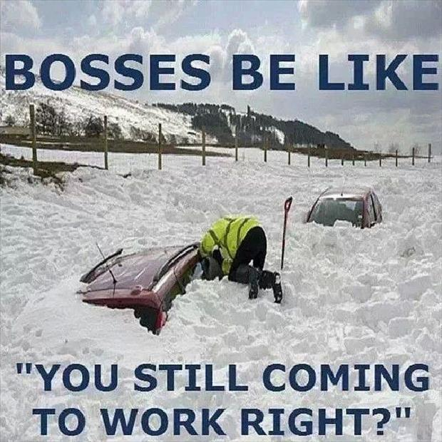 bosses be like, you're still coming to work right