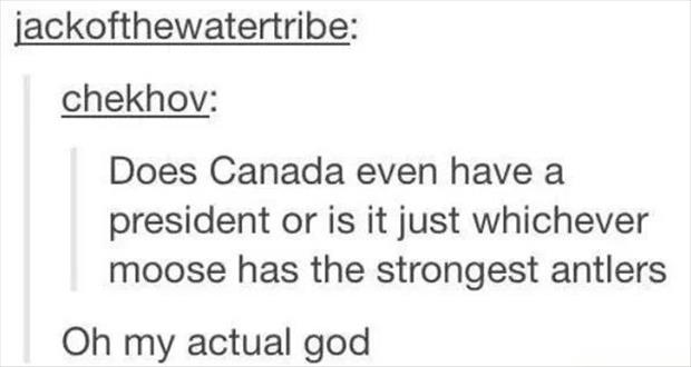 canada's president is a mosse