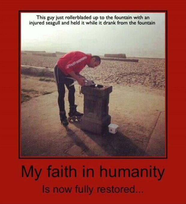 faith in humanity (6)