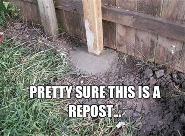 funny fence