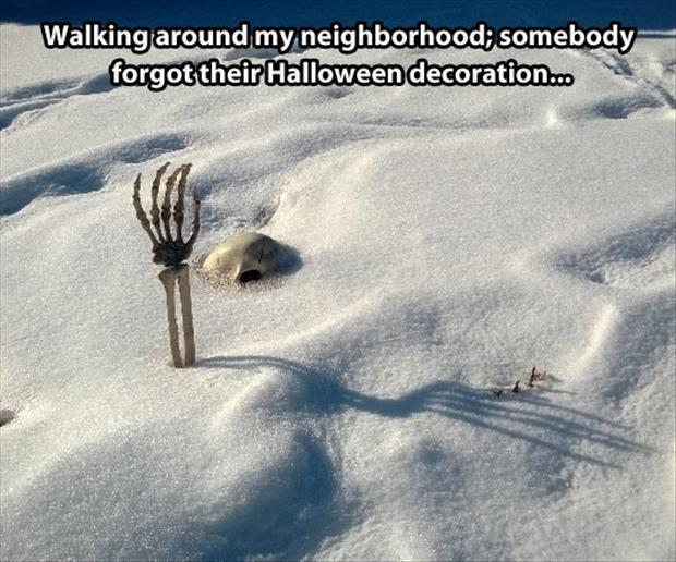 funny halloween decorations in winter