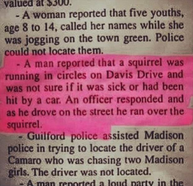 funny headlines cop runs over squirrel