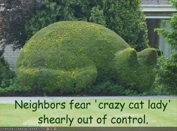 funny neighbors (7)