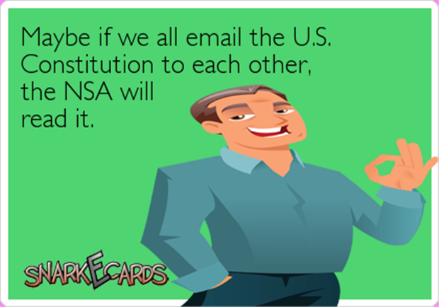 funny nsa contitution
