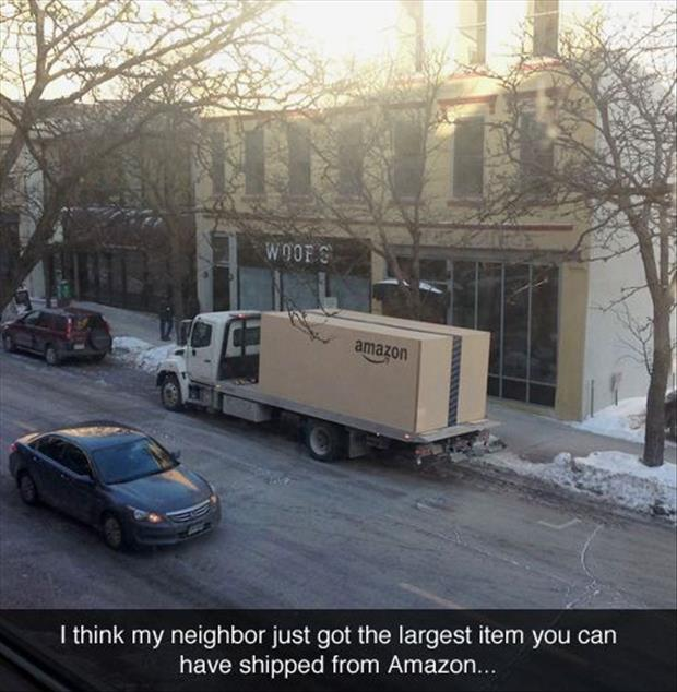 funny pictures (19)