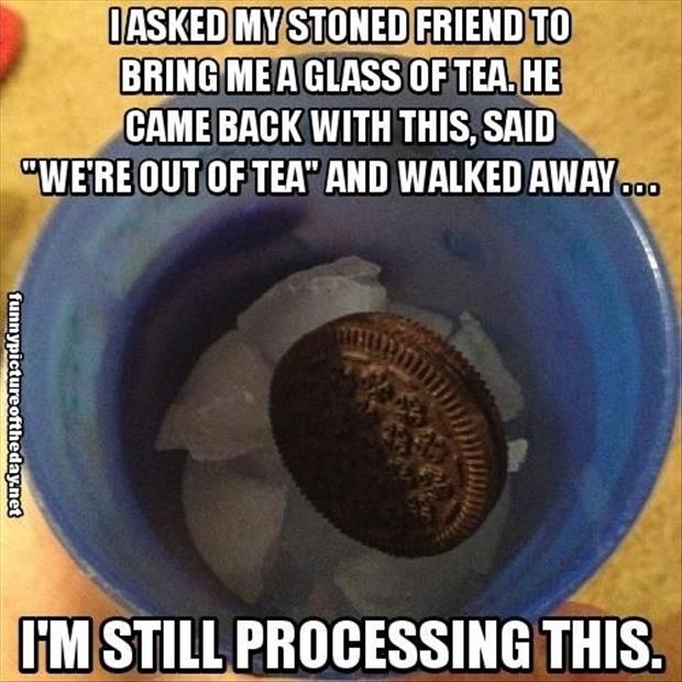 funny stoned friends
