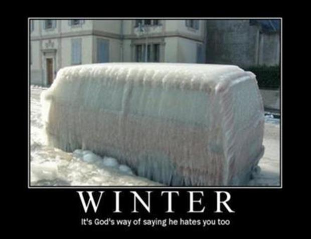 funny winter pictures (2)