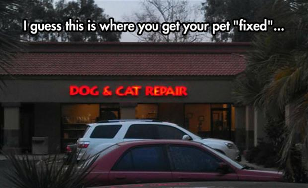 get your pet fixed
