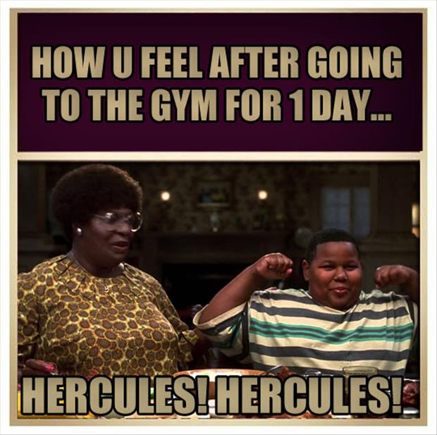 going to the gym for one day