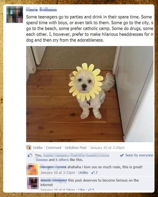 make head dresses for dogs