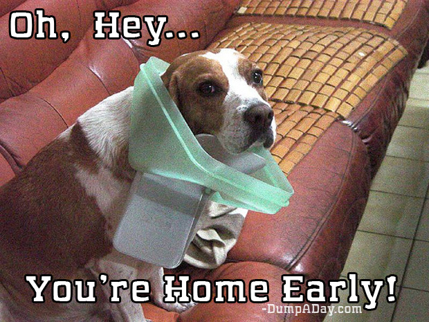 oh hey you're home early meme (11)