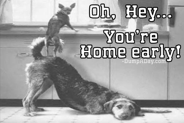 oh hey you're home early meme (19)