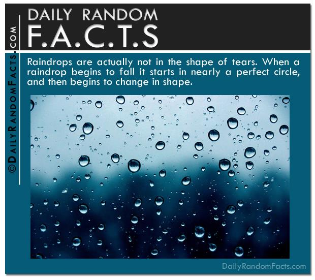 quick facts (11)