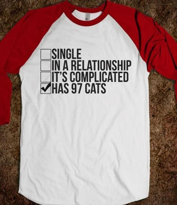 relationship status has cats