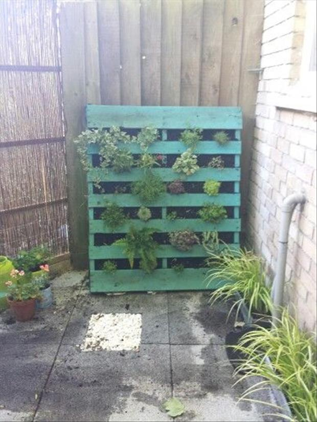 reuse old pallets (12)