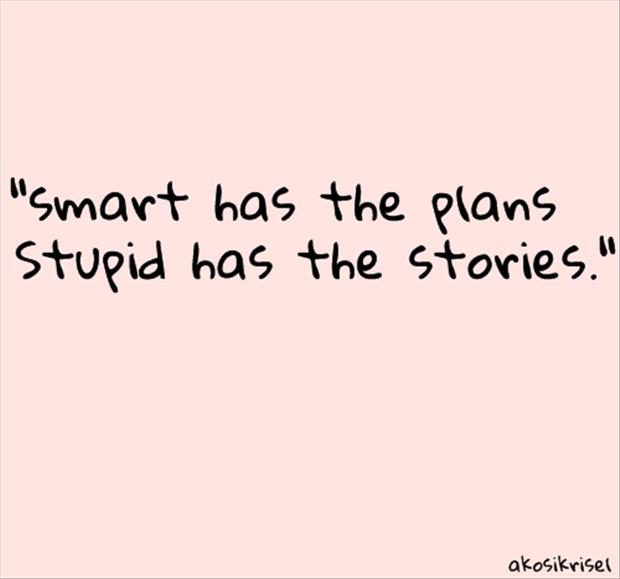smart has the plans stupid has the stories