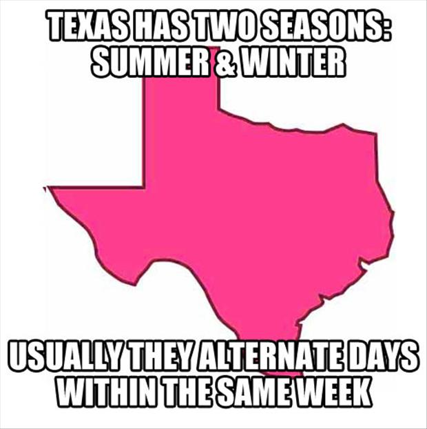 texas summer and winter