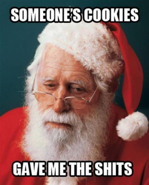 the cookies for santa