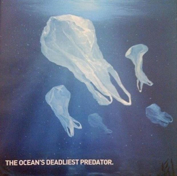 the oceans deadliest preditors