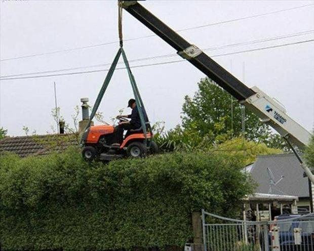 this is why women live longer (24)