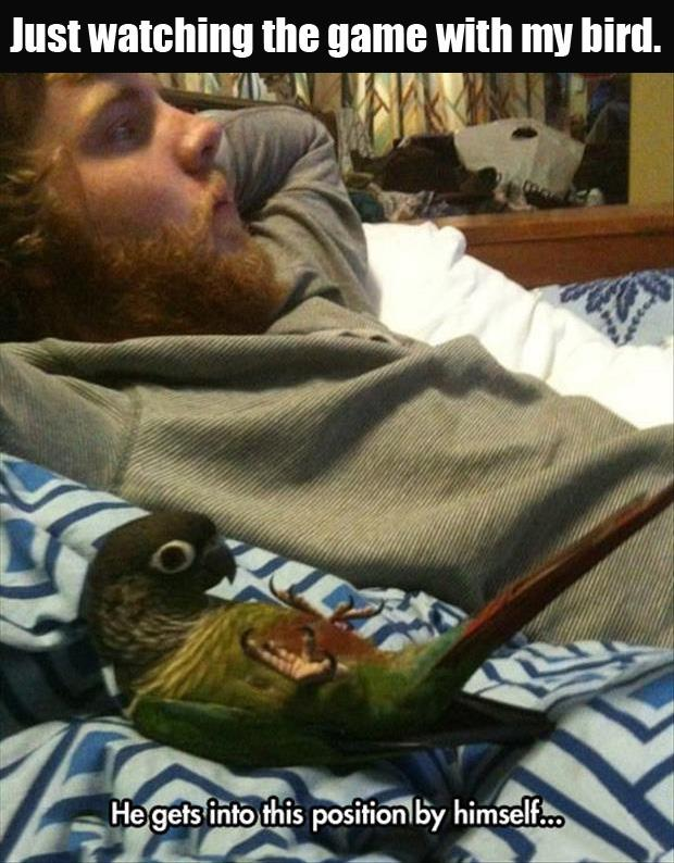 watching netflix with my bird