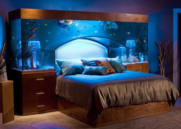 Meanwhile At My Pinterest Home- Over bed Aquariums