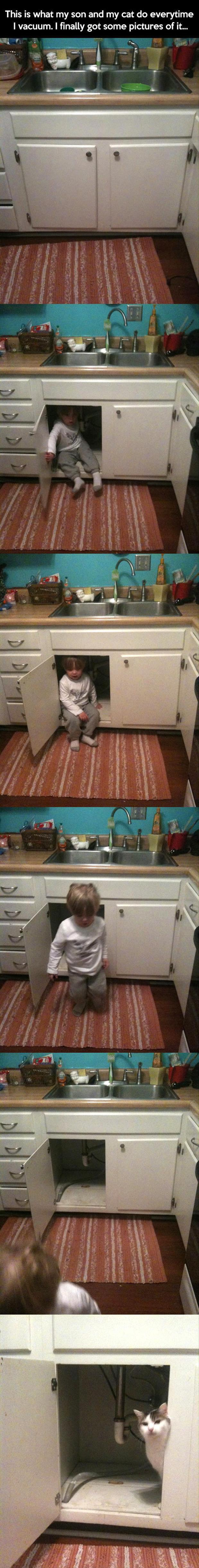 cats and kids hate the vacuum