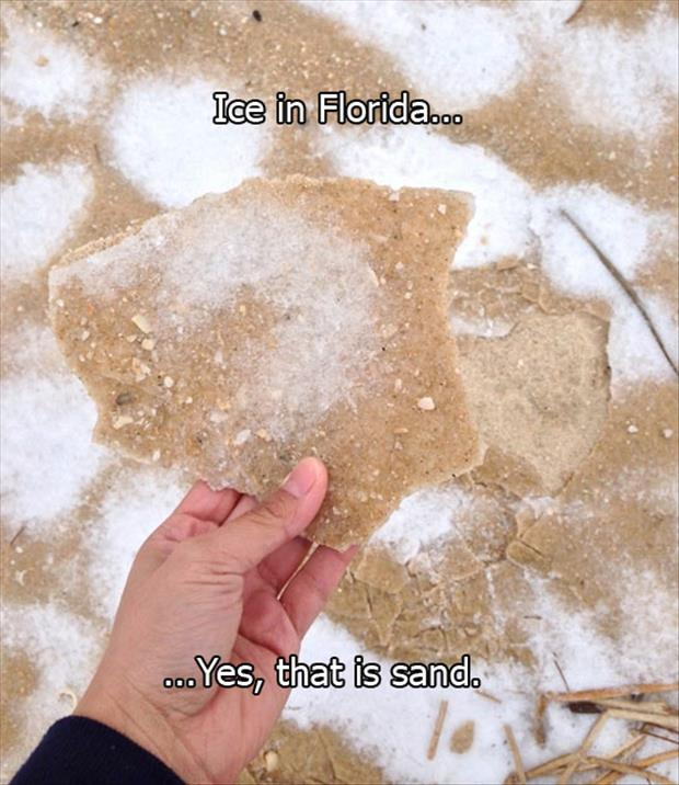frozen ice in florida