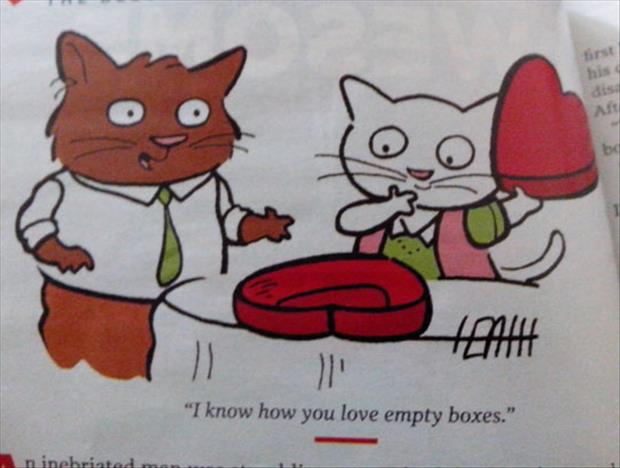 funny cats on valentine's day