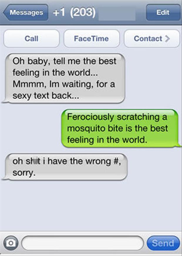funny sexting (12)