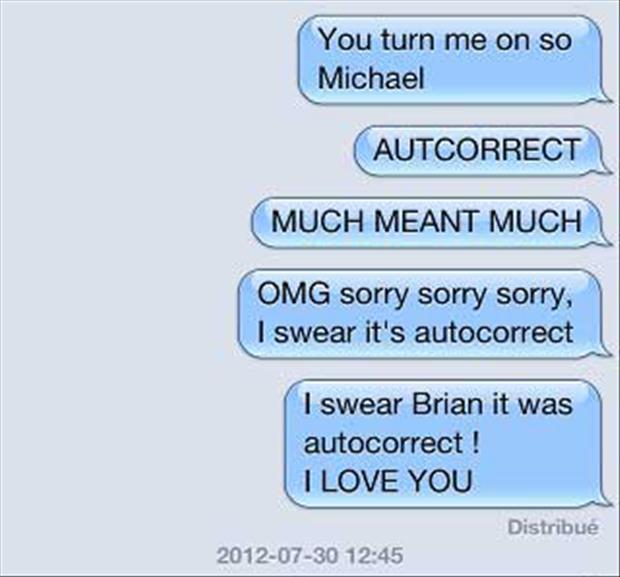 funny sexting (26)