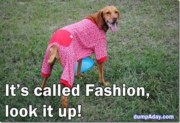 it's called fashion  (14)