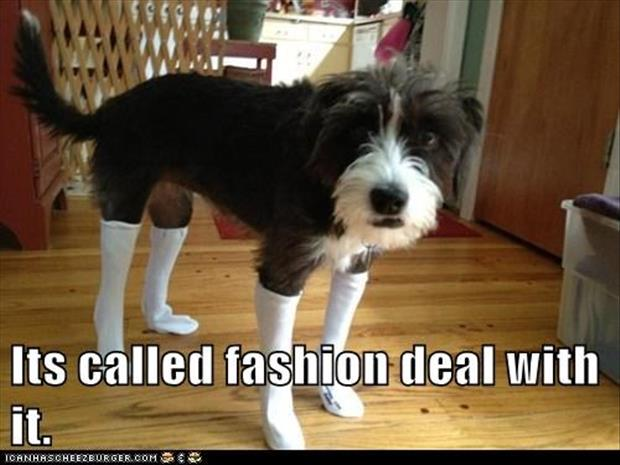 it's called fashion  (9)
