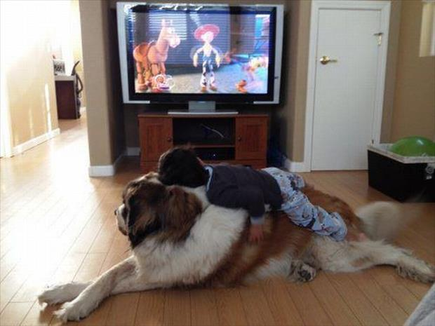 kid laying on the dog