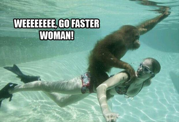 monkey riding a woman