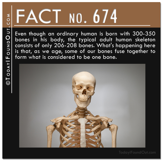 quick facts (6)
