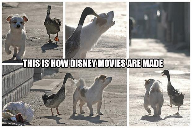 this is how disney movies are made