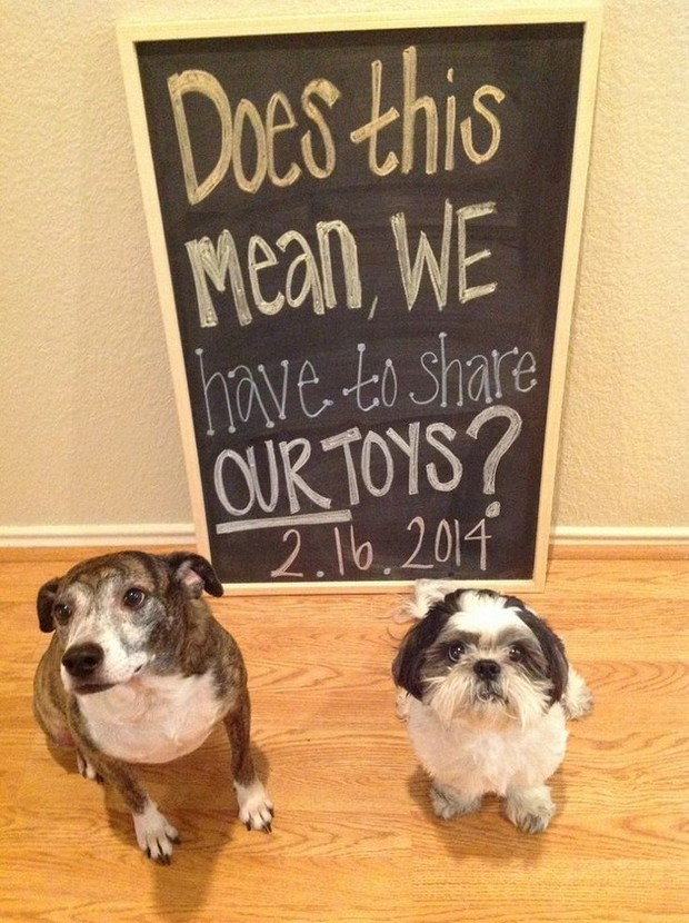 Creative-Baby-Announcements-01