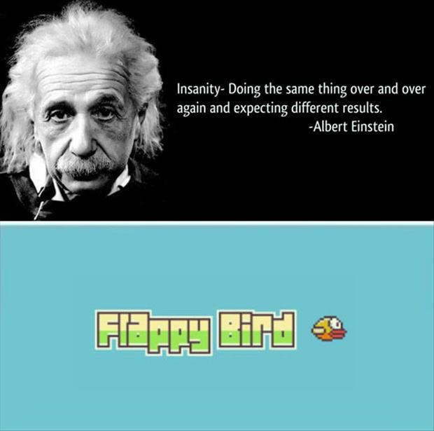 flappy bird funny pictures