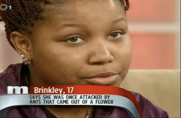 funny day time talk show captions (18)