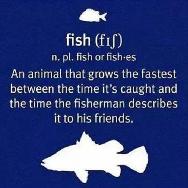 funny definitions fish
