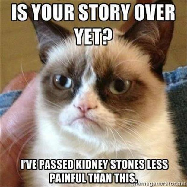 grumpy cat listening to your story