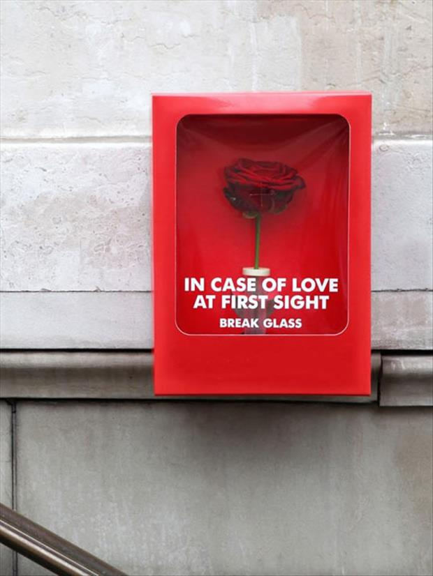 in case of love break glass