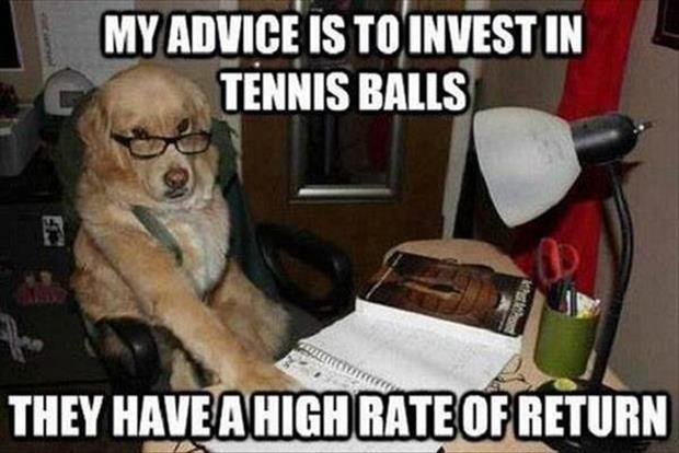investments funny