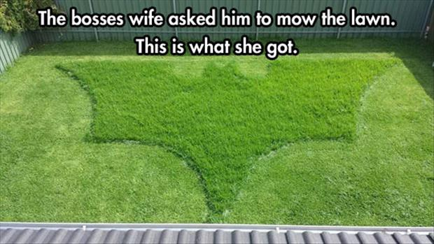 mowing the lawn funny